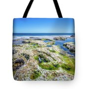 Seaweed And Salt Landscape. Tote Bag by Gary Gillette