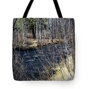 Secluded Brook Tote Bag