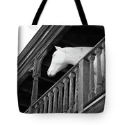 Second Story Visitor Tote Bag by Art Block Collections