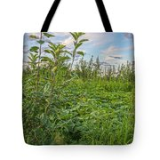 The Secret Life Of Gourds Tote Bag
