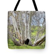 Secret Passageway Tote Bag