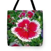Sedona Dianthus Tote Bag