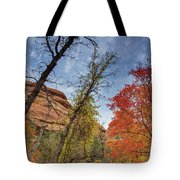 Sedona Fall Colors Tote Bag