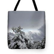 Sedona Skyline In Winter Tote Bag