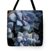 Sedum Clavatum Beautiful Cultivated Stonecrop Tote Bag