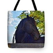 Do You Like My Brade Tote Bag