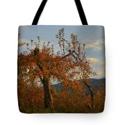See The Beautiful In Every Day Tote Bag