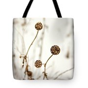 Seed Heads In The Snow Tote Bag