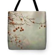 Seeds Of Fall Tote Bag