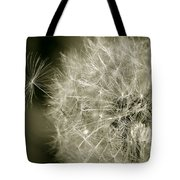 Seedy Dandelion Tote Bag