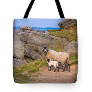 Seep And Lamb Tote Bag