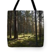 Seitseminen National Park Tote Bag