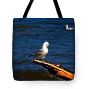 Self Cleaning Tote Bag