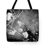 Self Portrait Of Sorts Tote Bag