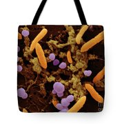 Sem Of Smelly Feet Bacteria Tote Bag