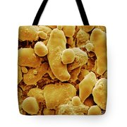 Sem Of Starch Granules Tote Bag