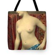 Semin Nude Girl Tote Bag