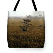 Seminole Morning Tote Bag