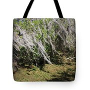 Seminole Wind Tote Bag