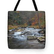 Seneca Creek Autumn Tote Bag