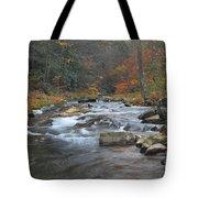 Seneca Creek Autumn Tote Bag