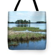 Seney Tote Bag