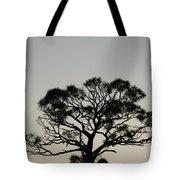 Senset Trees Tote Bag