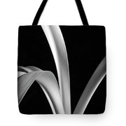 Sensuous Amaryllis Leaves Tote Bag