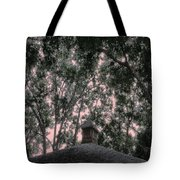 Sentinel Tote Bag by Eikoni Images