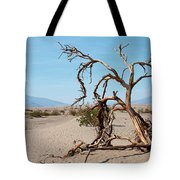 Sentinel Of The Dunes Tote Bag