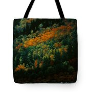 Sentinels Of September Serenity Tote Bag