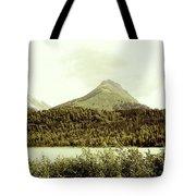 Sepia Alaska  Tote Bag
