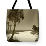 Sepia Beach Tote Bag