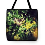 Sepia Butterfly Tote Bag