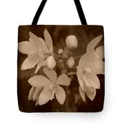 Sepia Flower Tote Bag