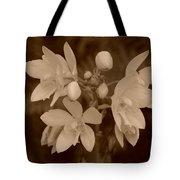 Sepia Flower Tote Bag