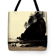 Sepia High Contrast Rialto Beach Tote Bag