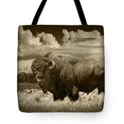 Sepia Toned Photograph Of An American Buffalo Tote Bag