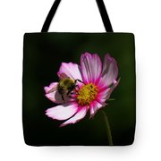 September Bee On Cosmos Tote Bag