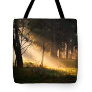 September Impressions Tote Bag by Rosario Piazza
