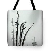 September Snow Tote Bag