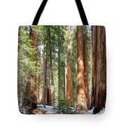 Sequoia Forest Tote Bag