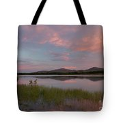 Serene Lake Tote Bag