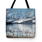 Serene Paddling Tote Bag