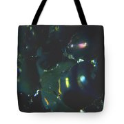 Series 2    Reef Fish Tote Bag
