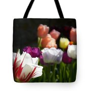 Seriously Colourful Tote Bag