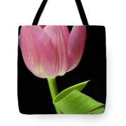 Seriously Pink 2 Tote Bag