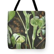 Sermon In The Woods Tote Bag