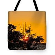 Setting Mangrove Sun Tote Bag