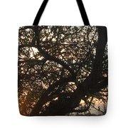 Setting Sun In Tree Tote Bag